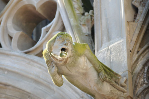 Wasserspeier an der Basilika Saint-Nazaire