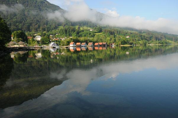 Morgenstimmung am Alpsee