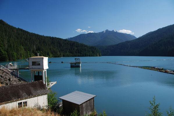 Elwah Stausee - Lake Mills