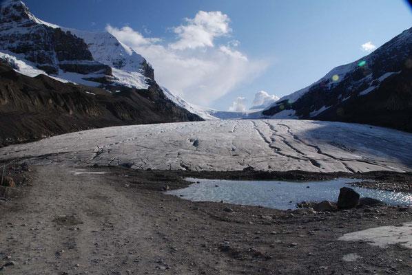 Athabasca Gletscher im Icefield Parkway