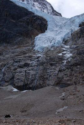 Cavell Glacier im Jasper Nationalpark