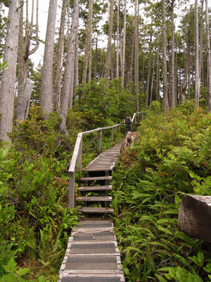 Ucluelet Wild Pacific Trail