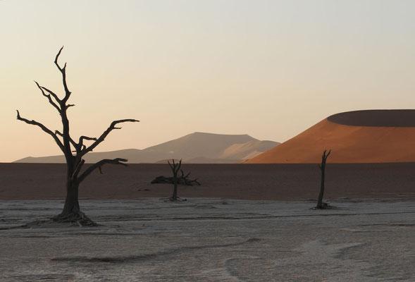 Namib Naukluft Park - Dead Vlei