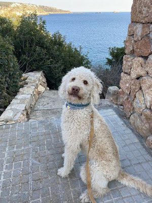 Paula - nimmt sich auf Mallorca eine Corona Auszeit