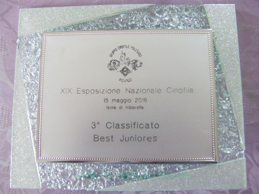 Premio del BIS Juniores , Shanti Dellyllè