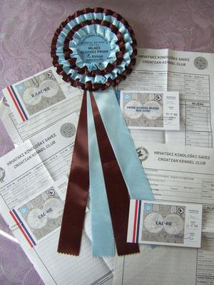 Ecco tutti i nostri premi ! 🎉🥇