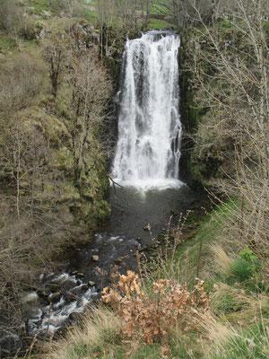 Cascade de Sartre formée par la Rhue qui tombe d'une trentaine de mètres de hauteur