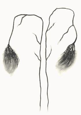 © cesa wendt | vage existenzen (7), 2012 | 100 x 70 cm | graphit, graphite | bild-nr. 2012_02_04