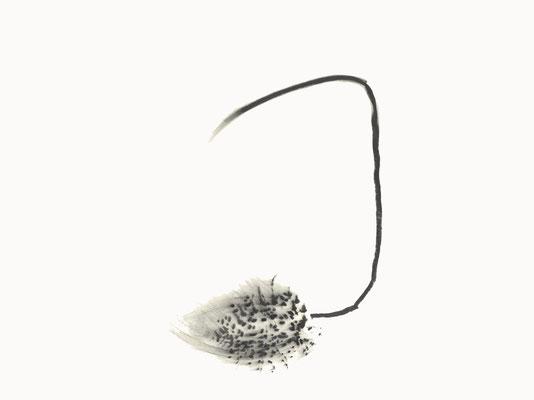 © cesa wendt | vage existenzen (4), 2012 | 50 x 70 cm | graphit, graphite | bild-nr. 2012_01_02
