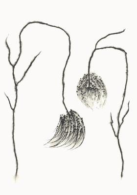© cesa wendt | vage existenzen (6), 2012 | 100 x 70 cm | graphit, graphite | bild-nr. 2012_02_03