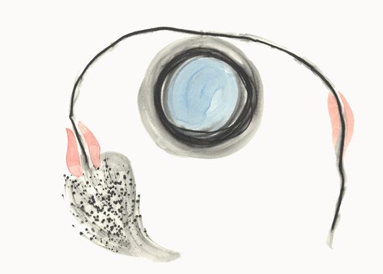 © cesa wendt | vage existenzen (9), 2012 | 50 x 70 cm |  graphit, aquarell / graphite, watercolour | bild-nr. 2012_02_01