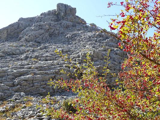 Karstlandschaft in der Sierra de Grazalema