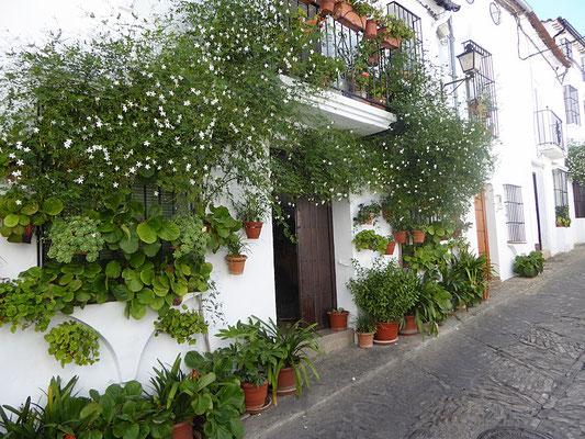 Grazalema - ein typisches weißes andalusisches Dorf