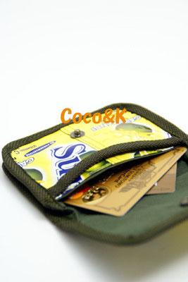 パスコイン 1000円+税