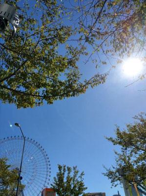 青空に太陽が眩しい