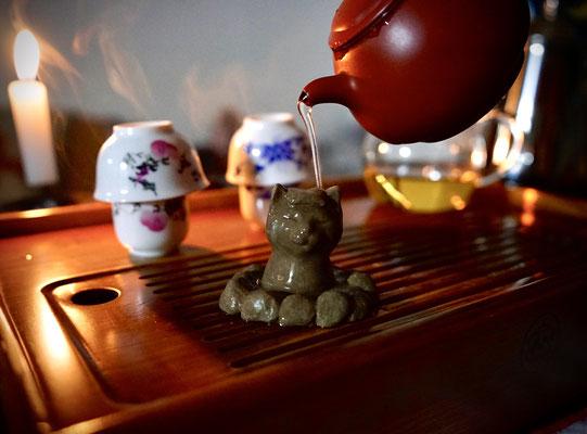 猫茶玩いい湯だな