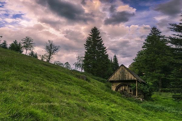 La Selva Negra de Alemania.