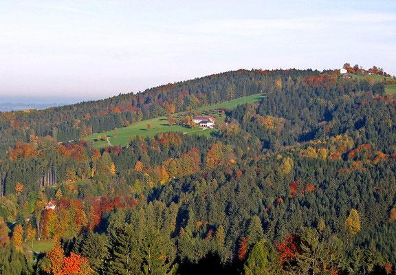 Blick vom Kogl auf Asang am Feichtenberg