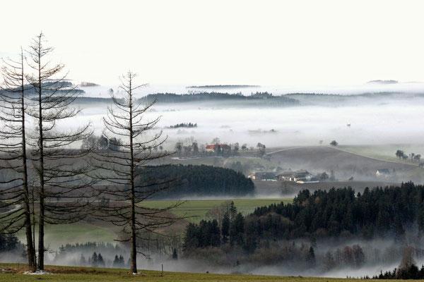 Blick vom Feichtenberg Richtung Kirchham