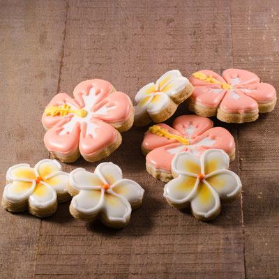 Hibiscus bloemen koekjes