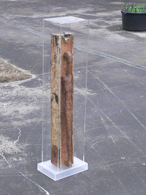 säule haube kasten plexiglas acrylglas