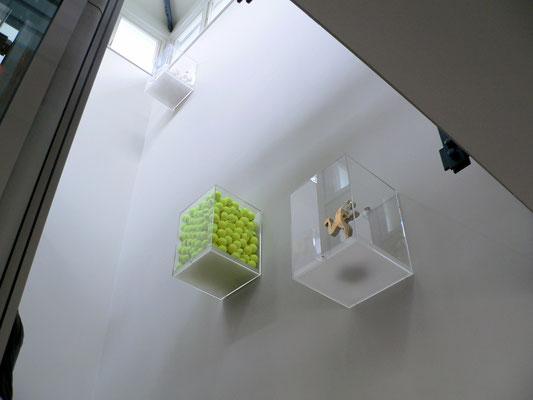 vitrine kasten plexiglas