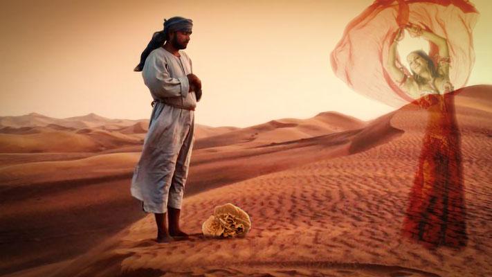 """Image scénique """"Desert Rose"""" par Fanny M. - Reproduction interdite"""