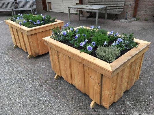 De bloembakken in april 2019 staan al gevuld klaar om straks naar de Bloementuin verhuisd te worden.