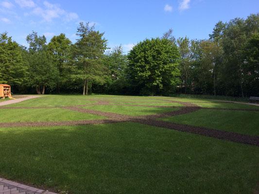 Op 6 mei is het padenpatroon al zichtbaar.