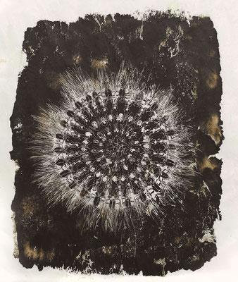 insection 4, 2018, 60 x 77 cm, verschiedene Wachse auf Papier