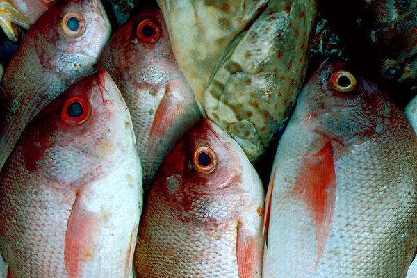 Fischmarkt, Malaysia, 1089