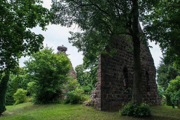 """""""Wüste Kirche"""" bei Berkenlatten, Brandenburg"""