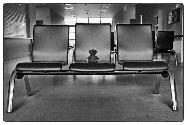 Teddy im Warteberich der kardiologischen Ambulanz
