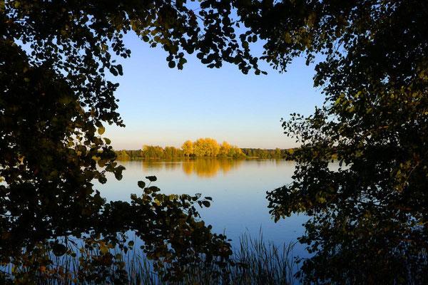 Brandenburg im Herbst