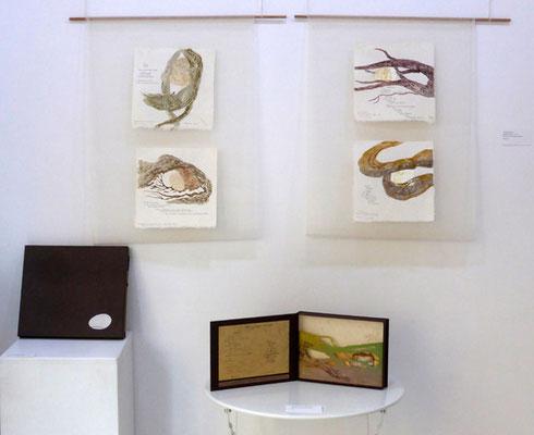 Racine et galet - estampes et livre-coffret réalisé avec Florence Clerc