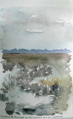 Mer du nord - la glaise du Friesland que Hein utilisera pour ses peintures