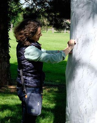Yannick Charon réalisant des lignes d'arbre sur un pin