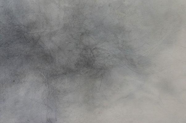 作品 拡大 (雲肌麻紙、墨、鉛筆、木炭、鉛筆、胡粉)