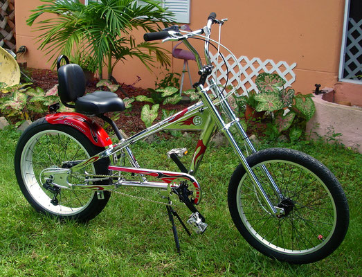 5 SPEED WITH 24 INCH REAR WHEEL