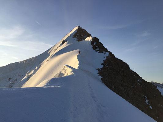 Beste Bedingungen am Walchergrat auf das Gross Fiescherhorn.