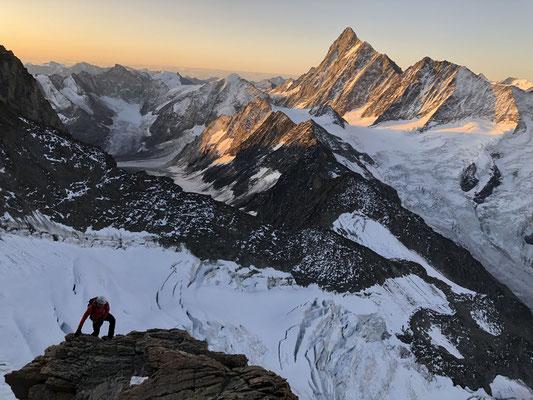 Auf dem Südwestgrat zügig Richtung Gipfel - im Hintergrund das Finsteraarhorn.