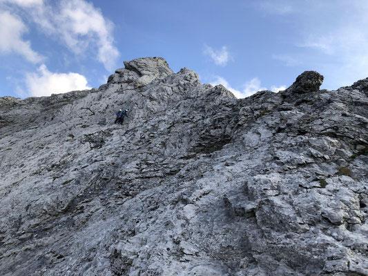 Der Abstieg zum Gemssattel ist nicht schwierig, aber stellenweise sehr heikel.