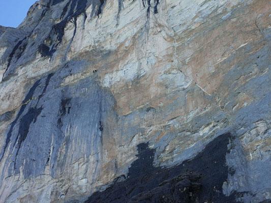 Kleine Kletterer in grosser Wand.