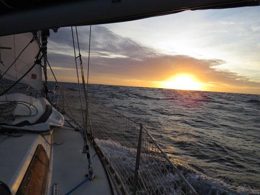 Dauphins et coucher de soleil pour finir la journée en beauté