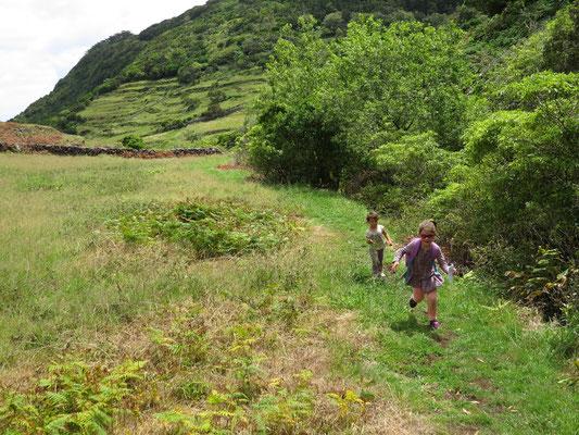 Marcher dans l'herbe, le bonheur !