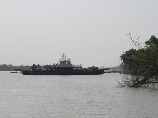 A Janjanbureh comme à plusieurs endroits du fleuve, le bac assure la liaison entre ses deux rives.