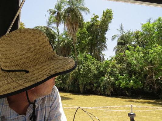 Dans le parc Baboon Island, on est à l'affût