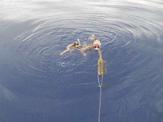 Nage avec masque en plein océan !