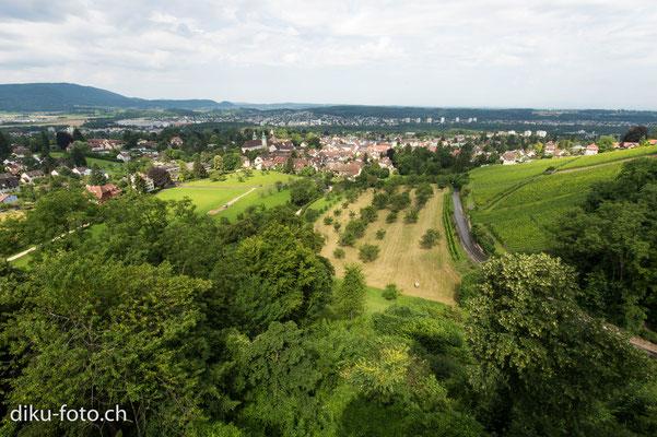 Arlesheim aus der Sicht vom Schloss