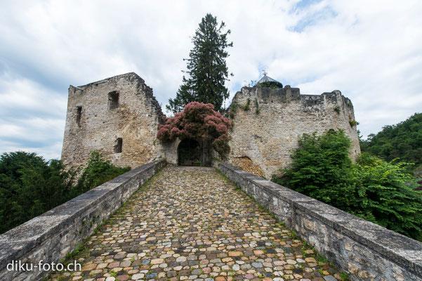 Eingang zum Schloss Birseck